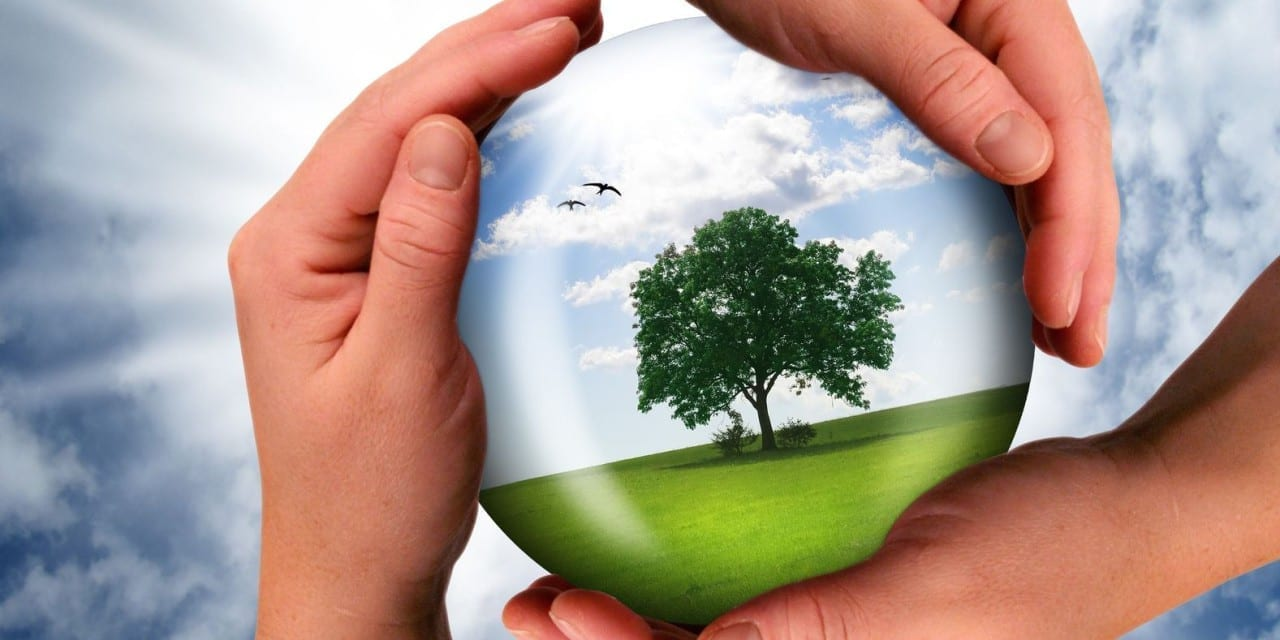 Free download: Guide to Understanding Sustainability