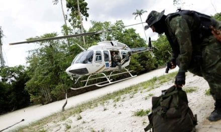 Amazon Forest Guardians: Now it's War
