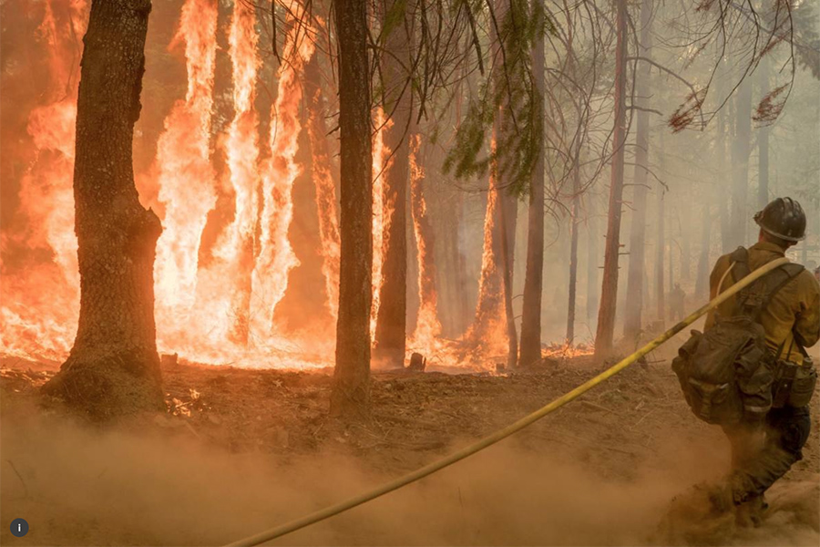 Fight California Fires With Ancient Knowledge, Researchers Say
