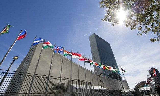 Your Next Big Business Opportunity: The United Nations