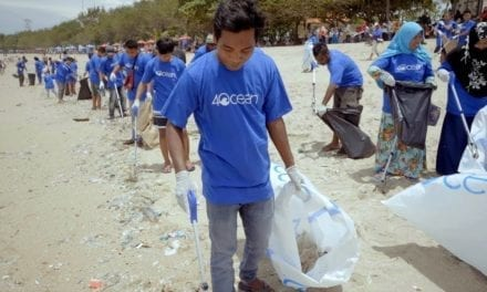 The Plastic Pollution Solution
