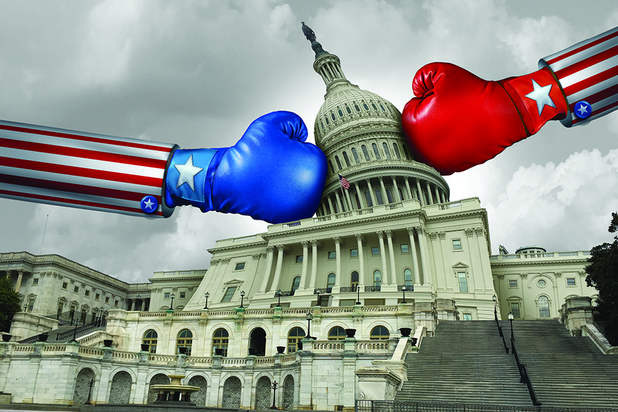 Preparing for the Storm:A Guide to Weathering America's Presidential Election Year