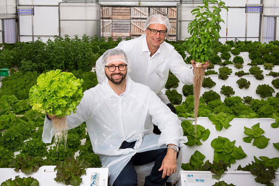 How to Grow Food Out of Thin Air
